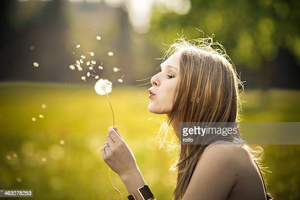 Dandelion blow ball