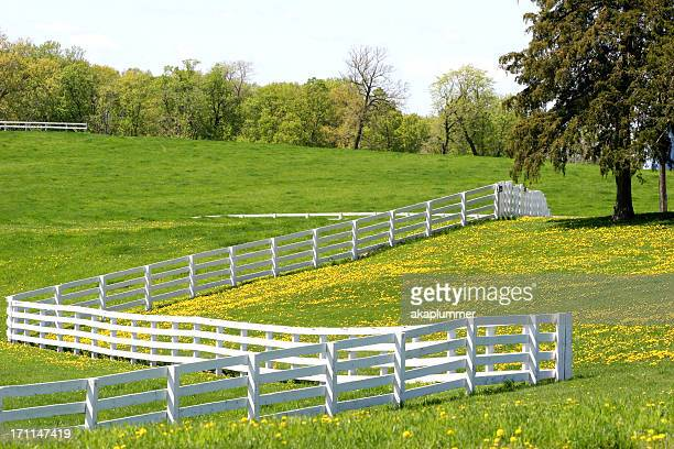 Am Rand auf einem Pferd Ranch