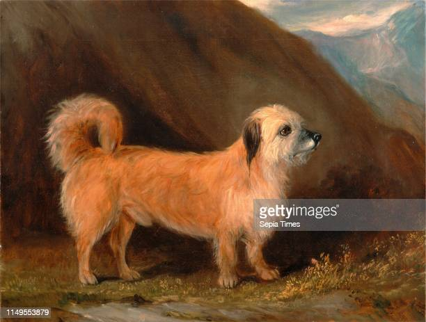 Dandie Dinmont Terrier Signed and dated, black paint, lower right: ' John Ferneley Jr. | 1848', John E. Ferneley Jr., 1815-1862, British