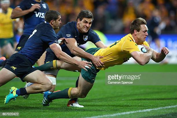 Dane HaylettPetty of the Wallabies scores a try during the Rugby Championship match between the Australian Wallabies and Argentina at nib Stadium on...