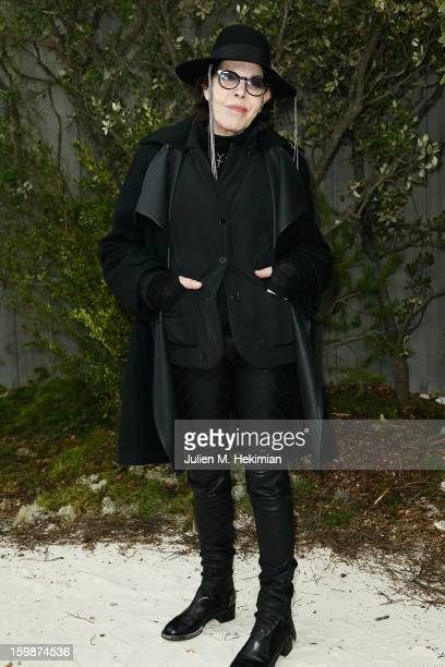 Dani attends the Chanel Spring/Summer 2013 HauteCouture show as part of Paris Fashion Week at Grand Palais on January 22 2013 in Paris France
