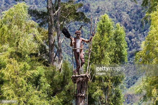 Dani man standing on guard on a watchtower Obia Village Baliem Valley Central Highlands of Western New Guinea Papua Indonesia