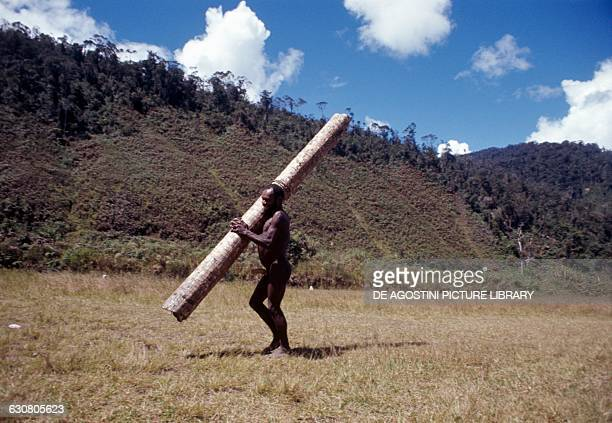 Dani men carrying a rolledup sheet made of palm leaves West Papua Indonesia