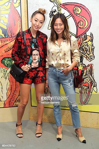 Dani Song and Aimee Song attend the Alice Olivia By Stacey Bendet fashion show during New York Fashion Week September 2016 at The Gallery Skylight at...