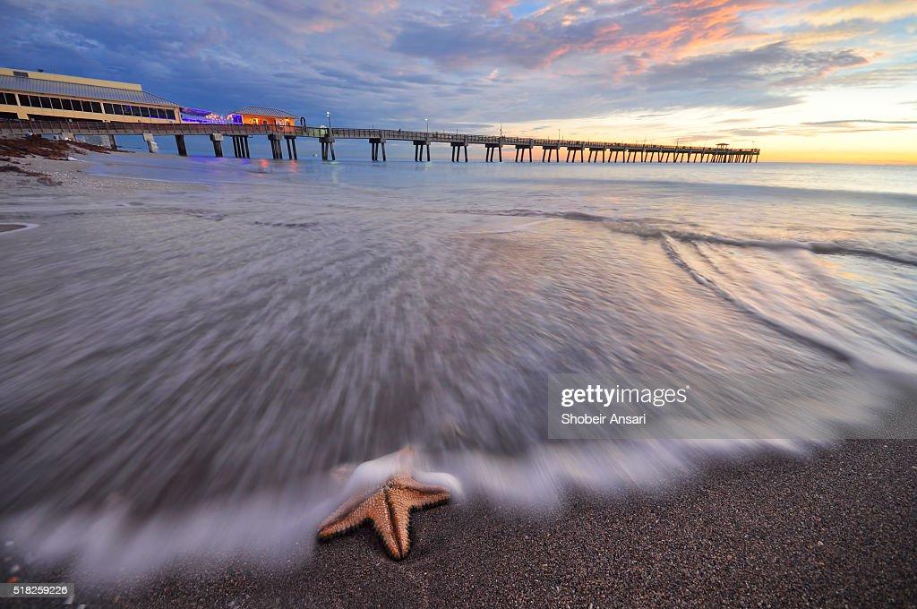 Dania Beach Fishing Pier Sunrise Florida Stock Photo Getty Images