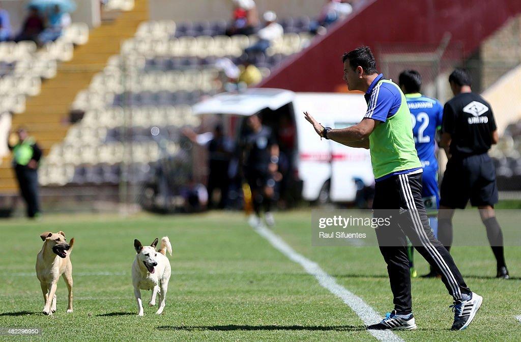 Leon de Huanuco v Sporting Cristal - Torneo Apertura 2015 : News Photo
