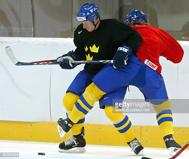 Daniel Alfredsson vies with a teammate during a training session of the Swedish team during the IIHF Icehockey World Championship in the...