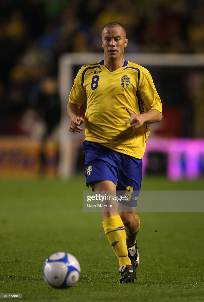 Sweden v Hungary - FIFA2010 World Cup Qualifier