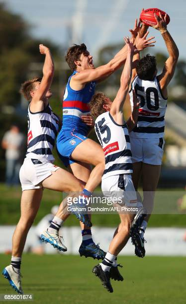 Daniel Capiron of Geelong takes a mark during the round six VFL match between the Footscray Bulldogs and the Geelong Cats at Whitten Oval on May 20...