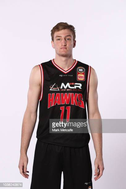 Daniel Grida of Illawarra Hawks poses during the 2018/19 NBL media day at Bendigo Stadium on September 21 2018 in Bendigo Australia