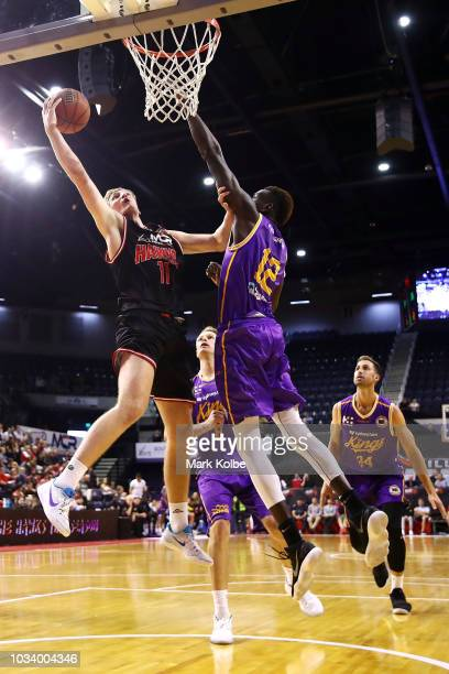 Daniel Grida of the Hawks lays up a shot during the NBL preseason match between the Illawarra Hawks and the Sydney Kings at WIN Entertainment Centre...