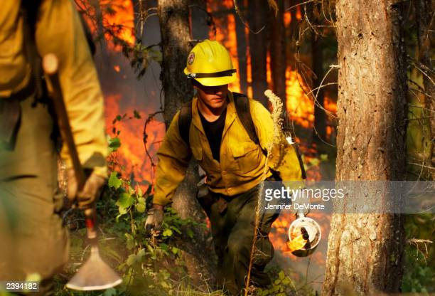Daniel Hammond a member of the Fulton hotshots from Bakersfield California lights a back burn to help contain the Robert Fire August 11 2003 in...
