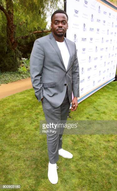 Daniel Kaluuya attends Variety's Creative Impact Awards and 10 Directors to Watch Brunch Red Carpet at the 29th Annual Palm Springs International...