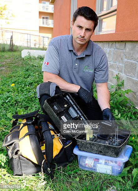 Daniel Mackie owner of Greenleaf Pest Control Rats are increasingly prevalent in Toronto and need to be dealt with He is here with one of his...