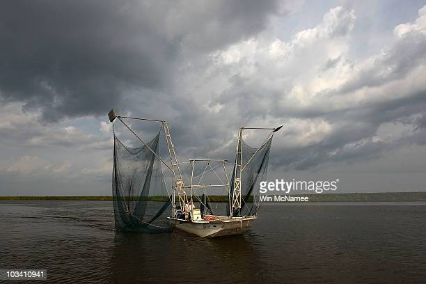Daniel May runs his small shrimping skiff through a bayou on August 16 2010 near DuLarge Louisiana Today marks the beginning of the shrimping season...