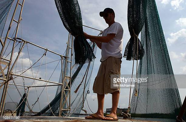 Daniel May sets up his nets on a shrimping barge located in a bayou ON August 16 2010 near DuLarge Louisiana Today marks the beginning of the...