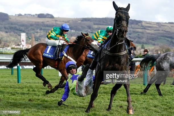Daniel Mullins gets himself tangled up with his mount Canardier after the last in The Coral Cup Handicap Hurdleon Ladies Day at Cheltenham Racecourse...