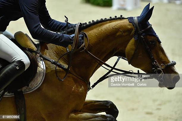 Daniel of Germany rides Equita van't Zorgvliet race winner Grand Prix Longines FEI World Cup by GL Events at in the EQUITA Lyon France Photo by...