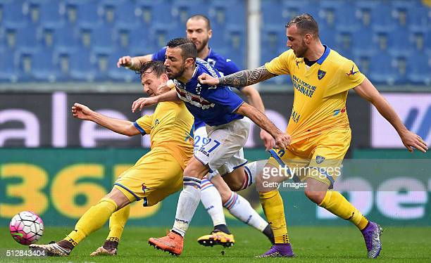 Daniel Pavlovic of Frosinone Calcio Fabio Quagliarella of UC Sampdoria and Leonardo Blanchard of Frosinone Calcio competes for the ball during the...