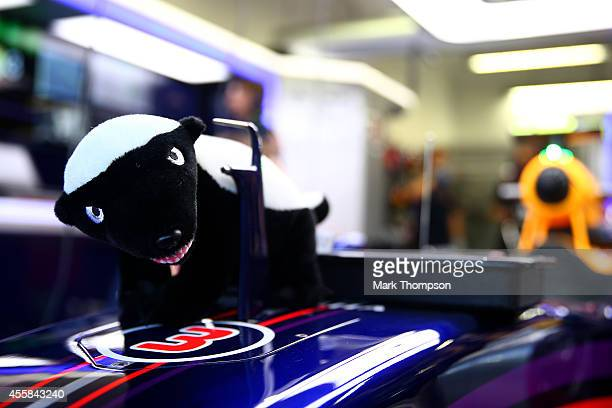 Daniel Ricciardo of Australia and Infiniti Red Bull Racing's honey badger mascot sits on the nose of his car in the garage during practice ahead of...