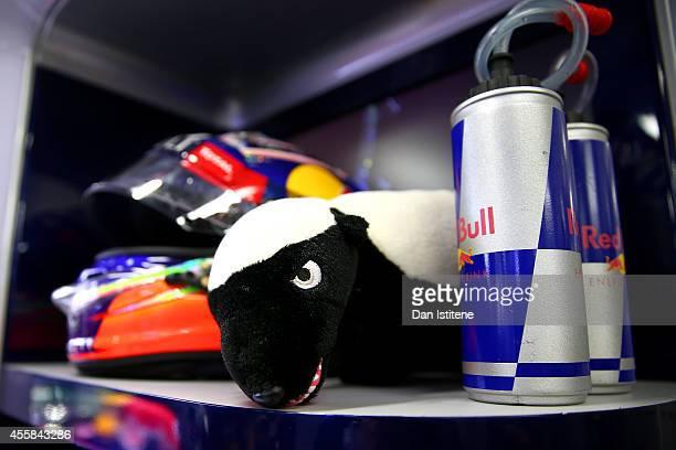 Daniel Ricciardo of Australia and Infiniti Red Bull Racing's honey badger mascot sits next to his helmet in the garage during practice ahead of the...