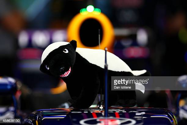 Daniel Ricciardo of Australia and Infiniti Red Bull Racing's honey badger mascot sits on his car before final practice for the Brazilian Formula One...