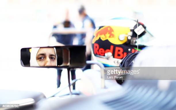 Daniel Ricciardo of Australia and Red Bull Racing prepares to drive during practice for the Formula One Grand Prix of Hungary at Hungaroring on July...