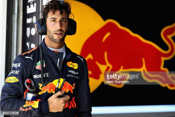 Daniel Ricciardo of Australia and Red Bull Racing prepares to drive during final practice for the Formula One Grand Prix of Hungary at Hungaroring on...