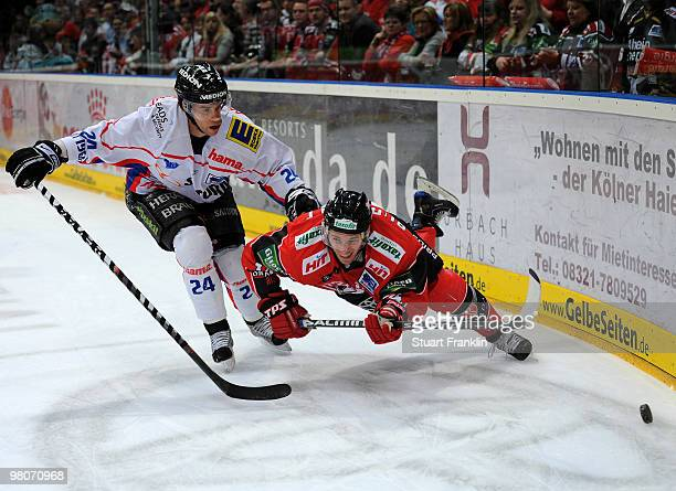 Daniel Rudslatt of Cologne challenges for the puck with Ryan Prestin of Ingolstadt during the DEL playoff match between Koelner Haie and ERC...