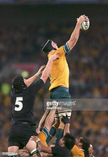 Daniel Vickerman of the Wallabies in action during the Tri Nations series Bledisloe Cup match between the Australian Wallabies and the New Zealand...