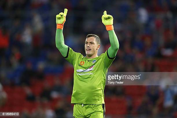 Daniel Vukovic of Sydney FC celebrates the win over the Jets during the round four ALeague match between the Newcastle jets and Sydney FC at McDonald...