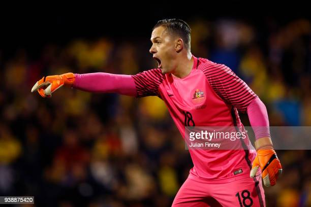 Daniel Vukovik of Australia gives his team instructions during the International friendly between Australia and Colombia at Craven Cottage on March...