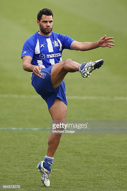 Daniel Wells kicks the ball during a North Melbourne Kangaroos AFL training session at Arden Street Ground on August 29 2014 in Melbourne Australia