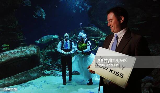 Daniel Winchester a celebrant looks on after conducting an underwater blessing of Aquarists Kathryn O'Connor and James Oliver on Valentine's Day in...
