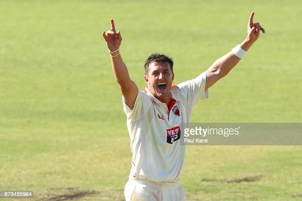 Daniel Worrall of South Australia appeals for the wicket of Mitchell Marsh of Western Australia during day one of the Sheffield Shield match between...