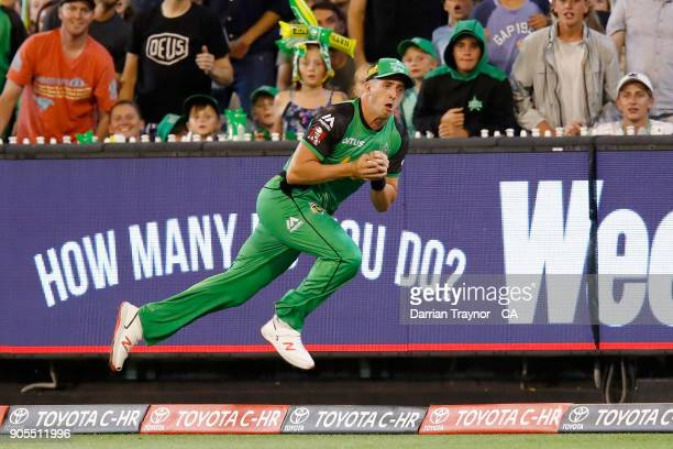 Daniel Worrall of the Melbourne Stars takes a catch but fails to stay inside the boundary rope during the Big Bash League match between the Melbourne...