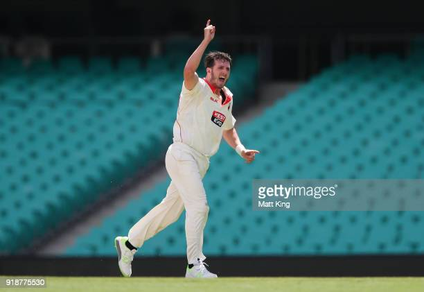 Daniel Worrall of the Redbacks celebrates taking the wicket of Nick Larkin of the Blues during day one of the Sheffield Shield match between New...