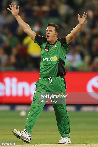 Daniel Worrall of the Stars appeals for a LBW successfully to dismiss Ben Cutting of the Heat during the Big Bash League match between the Melbourne...