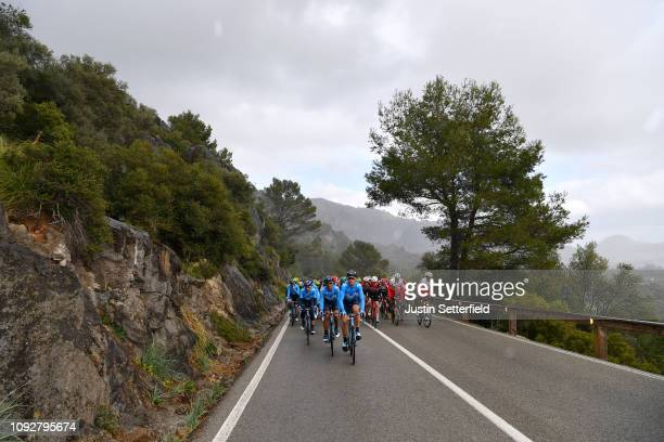 Daniele Bennati of Italy and Movistar Team / Imanol Erviti of Spain and Movistar Team / Peloton / Landscape / during the 28th Mallorca Challenge 2019...
