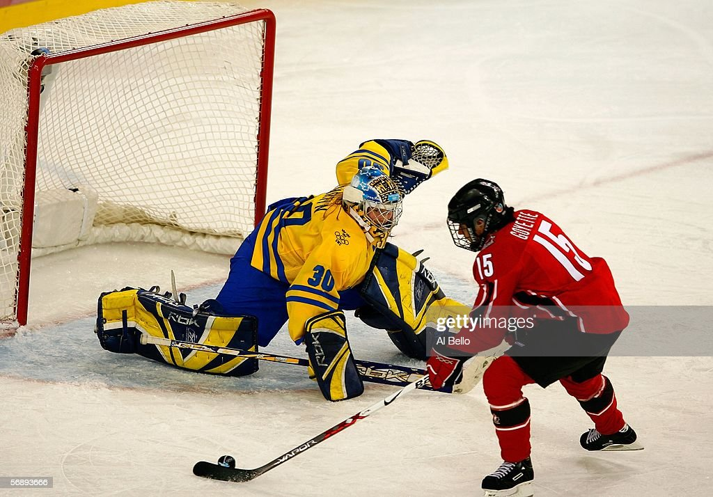Danielle Goyette #15 of Canada takes a shot on goal in front of goalie Kim Martin #30 of Sweden during the final of the women's ice hockey during Day 10 of the Turin 2006 Winter Olympic Games on February 20, 2006 at the Palasport Olimpico in Turin, Italy.