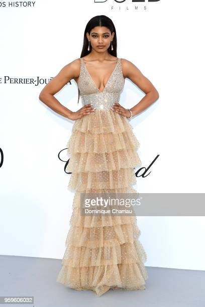 Danielle Herrington arrives at the amfAR Gala Cannes 2018 at Hotel du CapEdenRoc on May 17 2018 in Cap d'Antibes France