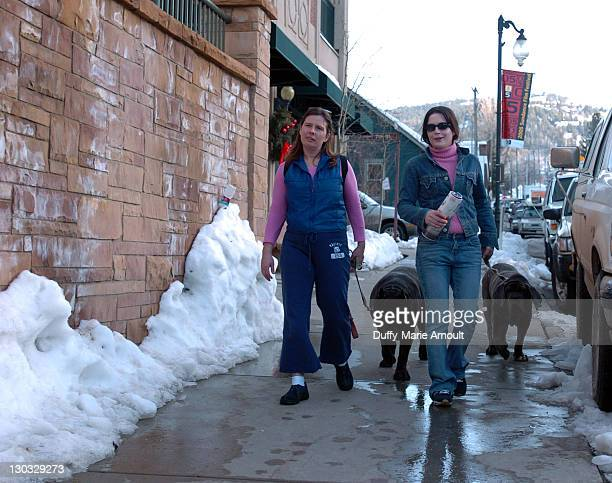 Danielle Martell with Maximus her Neopolitan Mastiff and Denise Martell with Donna her Neopolitan Mastiff on Park Avenue on the first day of the...