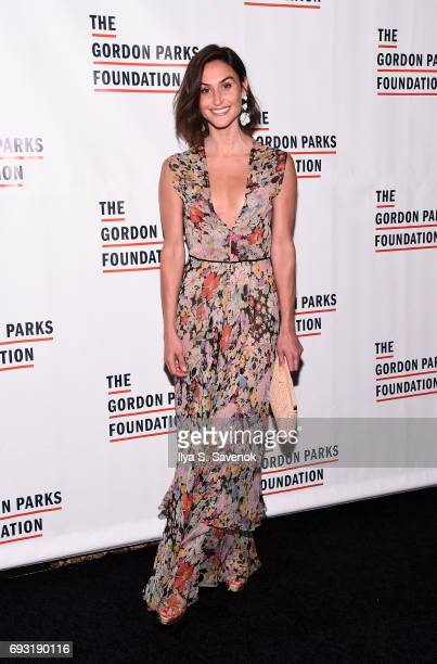 Danielle Snyder attends the 2017 Gordon Parks Foundation Awards Gala at Cipriani 42nd Street on June 6 2017 in New York City