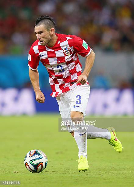 Danijel Pranjic of Croatia in action during the 2014 FIFA World Cup Brazil Group A match between Croatia and Mexico at Arena Pernambuco on June 23...
