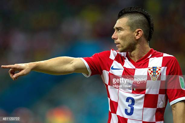 Danijel Pranjic of Croatia reacts during the 2014 FIFA World Cup Brazil Group A match between Croatia and Mexico at Arena Pernambuco on June 23 2014...