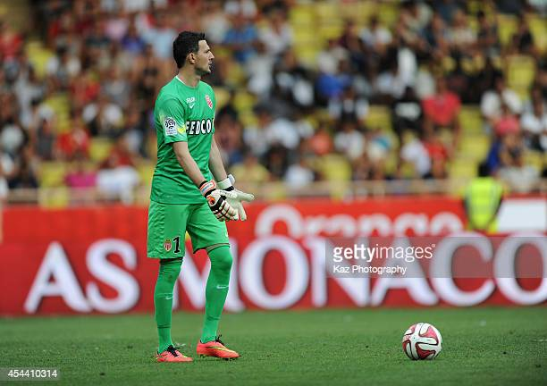 Danijel Subasic of Monaco in action during the French Ligue 1 match between AS Monaco FC and LOSC Lille at Louis II Stadium on August 30 2014 in...