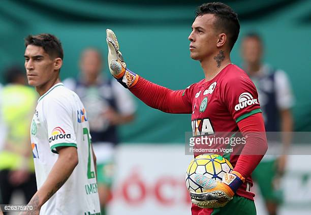 Danilo of Chapecoense looks on during the match between Palmeiras and Chapecoense for the Brazilian Series A 2016 at Allianz Parque on November 27...