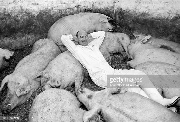 Danish farmer Michael Neilsen photographed at his Tilsbaek pig farm where he keeps 640 sows producing 18000 piglets per year mainly for the domestic...