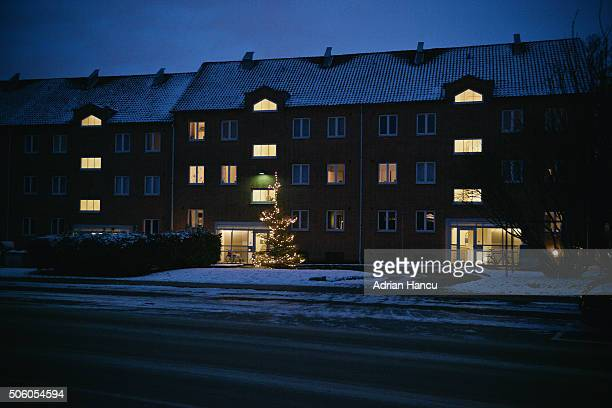 Danish residential style flats with illuminated evergreen trees at dusk in winter