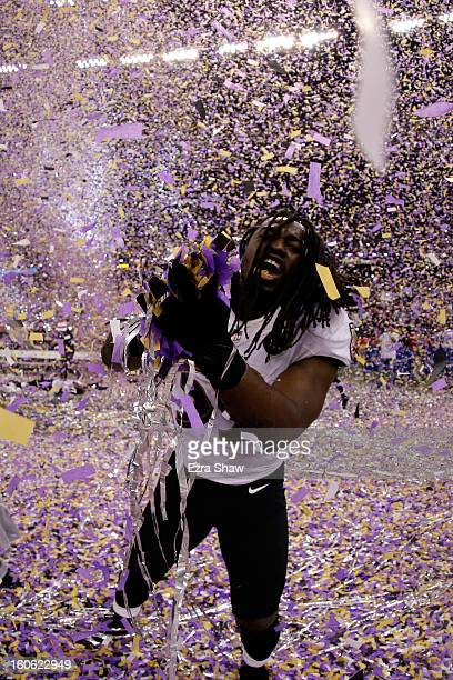 Dannell Ellerbe of the Baltimore Ravens celebrates after defeating the San Francisco 49ers during Super Bowl XLVII at the MercedesBenz Superdome on...